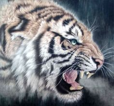Chinese Tiger Paintings Artists | Tiger,98cm x 98cm(38〃 x 38〃),4445012-z