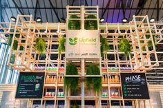 Upfield 2020 | BYLEI Flora, Fair Grounds, Create, Fun, Travel, Viajes, Plants, Destinations, Traveling