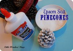 Epsom Salt Snowy Pinecones via Little Wonders' Days