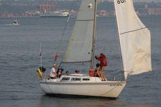 Luffing sail