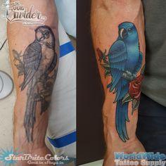 Parrot Tattoo Redo by Cracker Joe Swider in Connecticut Tattoo Portfolio, Artist Portfolio, Parrot Tattoo, New Milford, Tattoo Skin, Animal Tattoos, New Artists, Tattoo Artists, Watercolor Tattoo