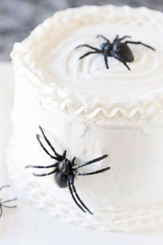 Wait until you see what's INSIDE this spooky spider Halloween cake!