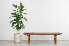 MC Coffee Table