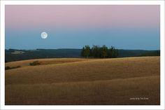 Moon in AR
