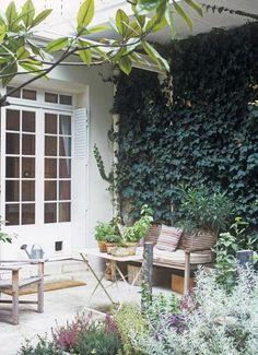muro verde en terraza