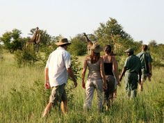 Walking safaris offer a precious experience of South Africa's Big Five game reserves in the company of expert game rangers Wild Camp, Honeymoon Vacations, Tanzania Safari, Safari Adventure, Wildlife Safari, Romantic Honeymoon, Game Reserve, Luxury Holidays, South Africa
