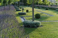 So cool to combine the trees and a ball of boxwood with the lavender hedge! Love Garden, Garden Pool, Garden Landscaping, Formal Gardens, Small Gardens, Outdoor Gardens, Landscape Architecture, Landscape Design, Garden Design