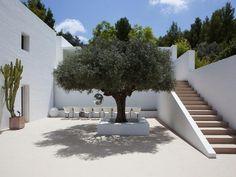 Glitter ball in a tree! House hunting in Ibiza Villa Ibiza, Luxury Villa, Landscape Design, Garden Design, Spanish Courtyard, Casa Patio, Spanish House, Mediterranean Homes, Exterior Design