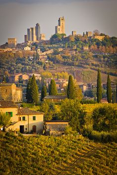 San Gimignano, Tuscany, Italy.I want to visit here one day.Please check out my website thanks. www.photopix.co.nz