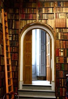 Arched doorway with bookshelves around it. Love, love, love