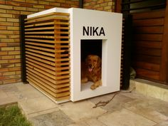 There are many kinds of pet dog toys readily available for you to select from. So, when searching for a suitable toy for your pooch keep in mind to consider your pet dog's age and activities initially. Modern Dog Houses, Cool Dog Houses, Pet Dogs, Dogs And Puppies, Pets, Dog Grooming Shop, Dog House Plans, Diy Dog Bed, Dog Furniture