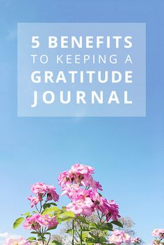 5 Benefits to Keeping a Gratitude Journal. Self-care. Morning pages. Morning Pages, School Essay, Personal And Professional Development, Creative Business, Self Care, Gratitude, Benefit, Journaling, Reflection