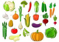 Isolated Farm Vegetables