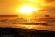 Sunset in NZ from As the Bird flies