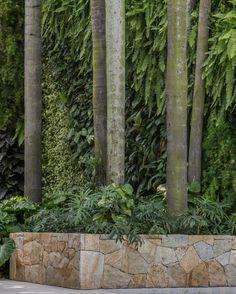 """765 Likes, 5 Comments - Alex Hanazaki (@alexhanazaki) on Instagram: """"Vertical #paisagismobyhanazaki #alexhanazaki #hanazaki #paisagismo #arquitetopaisagista #jardins…"""""""