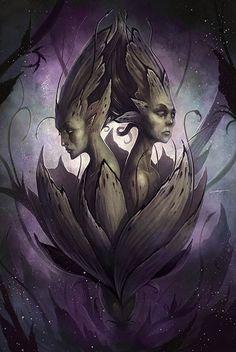 Fusion by Coliandre