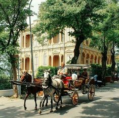 büyükada, istanbul (foto: nahid özen) +(info added by hulkiokantabak) This faytoncu (the carriage driver) has been there at least since when I was kid in Buyukada. Middle East Destinations, Holiday Destinations, Holiday Places, Bulgaria, Andorra, Turkish People, Turkey Photos, Turkish Art, Paintings