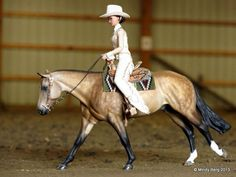 Western pleaser breyer horse scene once in awhile well a lot of the time there bad this one is good