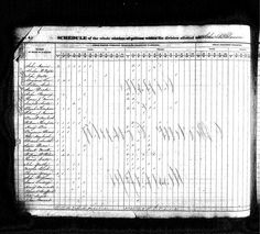First census for the county that was formed in 1833 from territory acquired from the Choctaw Indians.