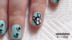 Boston Terrier Nails