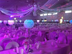 All white wedding decor for adelaide wedding reception www wedding reception for 600 guests at the campania club in adelaide featuring wall ceiling and junglespirit Image collections