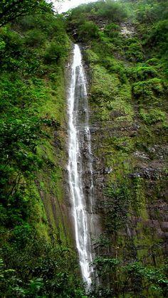 Waimoku Falls in Maui - simply breath taking - worth the hike!