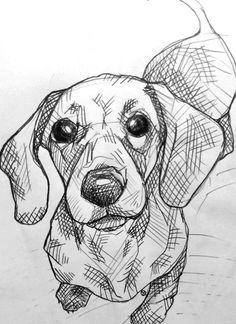 Cool Art Drawings, Pencil Art Drawings, Art Drawings Sketches, Sketches Of Dogs, Animal Sketches, Animal Drawings, Drawings Of Dogs, Dachshund Art, Dachshund Drawing