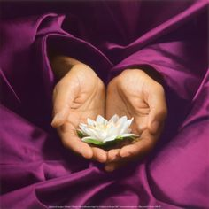 Reiki is a gentle, natural healing method which restores and balances your energy. Relax and enjoy a Reiki Session at Healingmoon Reiki in Wragby, Lincolnshire Zen Meditation, Dalai Lama, Hilary Hahn, Art Thérapeute, Autogenic Training, Reiki Training, Fuerza Natural, Buddha Zen, Gautama Buddha