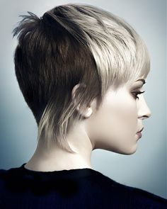 Paul Stafford Short Blonde Hairstyles