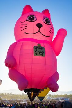 High Kitty - Giant Pink Kitten Balloon Air Ballon, Hot Air Balloon, Albuquerque Balloon Festival, Catch The Cat, Romantic Ways To Propose, Ganesh Idol, Big Balloons, Balloon Rides, Pink Cotton Candy