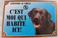 Je ne suis pas juste un chien personne que je suis un berger allemand momie MDF Plaque Murale//Signe