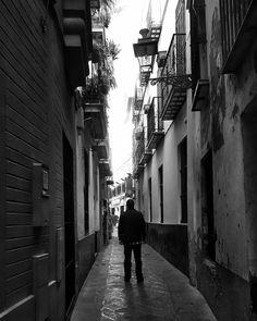 Cuantos paseos me debes adios calle del mal pago cuantas veces me han tapao las sombras de tus paredes las tejas de tus tejaos #Fandango de #Alosno  #igerssevilla #barriodesantacruz#igersspain #igersandalucia #instagramers #igers #somosinstagramers #hallazgosemanal #primerolacomunidad
