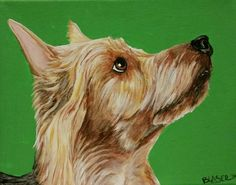 MARCH MADNESS SALE Original Australian Terrier Dog Art Acrylic Painting 8x10 Pet #Realism