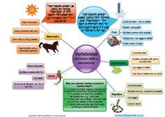 Natural Science : Grade 4 NS - Animals and Habitats
