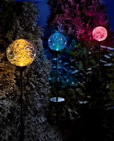 Northern Lights Solar Light | Buy from Gardener's Supply