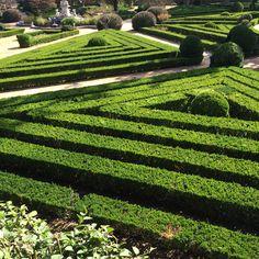 Jardim Botânico do Palácio da Ajuda, Lisbon, Portugal Eurotrip, Topiary, Stepping Stones, Europe, Places, Outdoor Decor, Home Decor, Stair Risers, Decoration Home