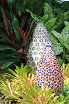 Picture of Big enameled Flowery Vase to decorate a Bromeliad garden stock photo, images and stock photography. Tropical Garden Design, Tropical Plants, Tropical Gardens, Gnome Garden, Garden Pots, Japan Garden, Garden Fountains, Design Thinking, Garden Styles
