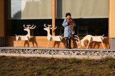 renne di legno