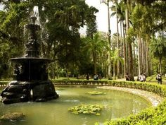 The Botanic Gardens in Rio is considered one of the most beautiful gardens in the world.