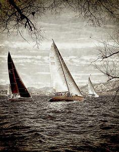 Three Sailboats, Nautical Theme Photograph by Jean Francois Gil