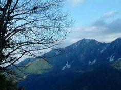 Le mie Piccole ma Grandi Dolomiti... dal Rifugio La Guardia strada che da Recoaro Terme porta a Rif.Campogrosso Foto di Piero Molon