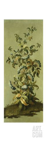 Decorative Panels with Flowers Stretched Canvas Print by Jean Baptiste Pillement at Art.com