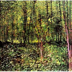 Vincent Van Gogh - Trees and Undergrowth oil painting