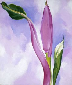 From ARS/Art Resource, Georgia O'Keeffe, Pink Ornamental Banana Oil on canvas, 19 × 16 in Georgia O'keeffe, Alfred Stieglitz, Wisconsin, Claude Monet, Georgia O Keeffe Paintings, Oil Painting Reproductions, Art Institute Of Chicago, American Artists, New Mexico