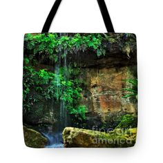 """Ferns under a Waterfall Tote Bag 18"""" x 18"""" by Kaye Menner"""