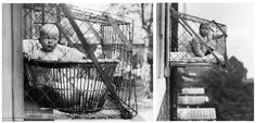 with industrialization came cities and with cities came crowded, cramped living quarters.  The baby cage kept infants out of harm's way and gave the family a bit more space.  As Bridges discusses, it also coincided with the idea that babies needed a lot of fresh air to be healthy.  The baby cage seemed like the perfect solution.