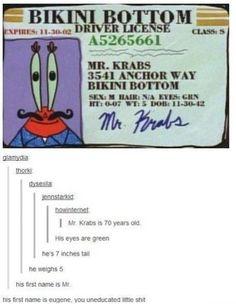 Mr Krabs' Driver's License