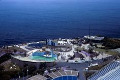 Marineland of the Pacific - Went here with my Mom and Dad in May of 1976. Mom passed away 7 months later. So glad I got to enjoy this place with my mom and dad.
