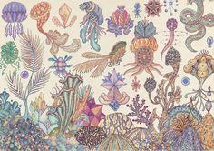 Katie Scott, nos deleita con sus imágenes anatómicas de seres humanos, animales y plantas. Una visión interna, como si fuese de manual escolar, de todo el reino animal yvegetal.La obra de Kat
