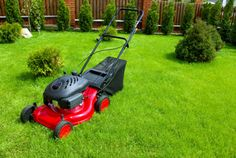Which mower is right for you? It can be very difficult to decide which lawnmower to buy. The choice will depend largely on the size of your garden as well as the finish you wish to create.